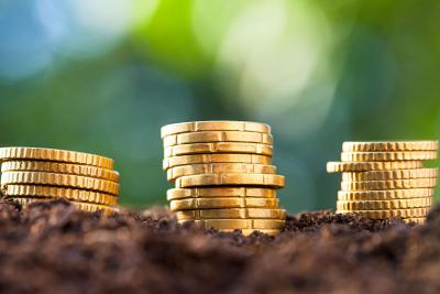 Coins and nature, symbolising ethical savings