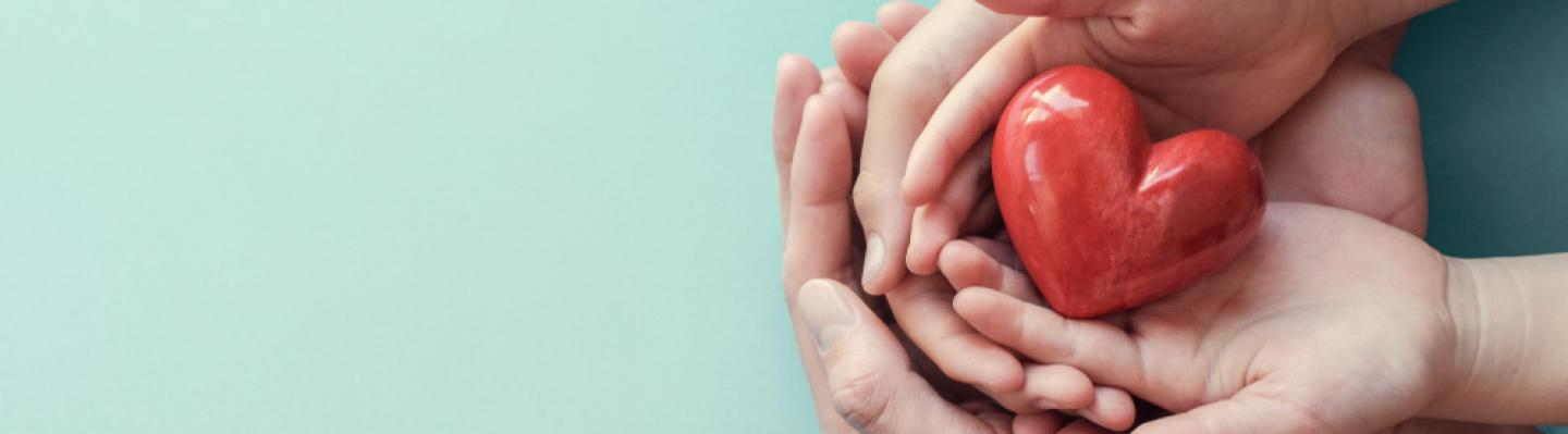 Adult's and child's hands holding a red heart